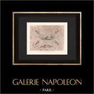 Architektur - Dekoration - Petit Palais - Bildende Künste in Paris (Girault)