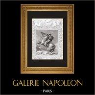 Ritratto di Napoleone Bonaparte - Colle del Gran San Bernardo - 1800 (Jacques-Louis David) | Stampa calcografica originale a bulino su acciaio secondo Jacques-Louis David incisa da Prevost. 1846
