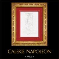 Allegory - Cleopatra (Baccio Bandinelli - Bartolomeo Brandini)