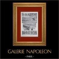 Château de Versailles - Salon de Vénus - Détails des chapiteaux | Héliogravure originale. Anonyme. 1911
