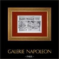 Palace of Versailles - Salon de Mars - Frises et Plafond (Marsy)