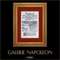 Palace of Versailles - Salon de Mars - Corniche et Plafond (Marsy)