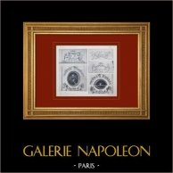 Schloss Versailles - Le Grand Trianon - Salon de la Musique - Dessus de porte