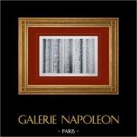 Schloss Versailles - Le Grand Trianon - Chambranles de divers salons