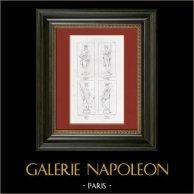 Allegory - Vintage - Shipping - Colony - Protection (Raphael - Raffaello Sanzio)