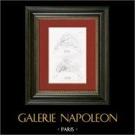 Story of Psyche - Attributes of Mars and Apollo (Raphael - Raffaello Sanzio)