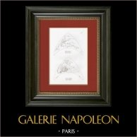 Histoire de Psyché - Attributs de Mars et de Apollon (Raffaello Sanzio dit Raphaël)
