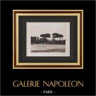 Villa Albani (Rome) - Vue prise de l'Entrée | Héliogravure originale sur papier velin. Paul & Vigier. 1922