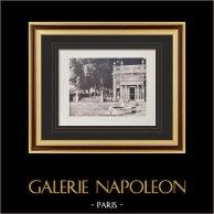 Villa Albani (Rome) - Casin - Portique - Colonnes | Héliogravure originale sur papier velin. Paul & Vigier. 1922