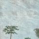 DETAILS 01   View of Boké - Rio Nunez (Guinea)