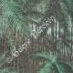 DETAILS 01   Indigenous Australians - Hunt - Queensland (Australia)