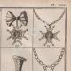 DETAILS 04 | Heraldry - Coat of Arms - Escutcheon - Encyclopédie Méthodique - Diderot's Encyclopédie - Pl.27