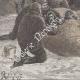 DÉTAILS 03 | Expédition Polaire Greely - Sauvetage - Lady Franklin Bay - Qikiqtaaluk - Nunavut - Détroit de Nares - Ile d'Ellesmere (Canada)
