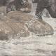 DÉTAILS 04 | Expédition Polaire Greely - Sauvetage - Lady Franklin Bay - Qikiqtaaluk - Nunavut - Détroit de Nares - Ile d'Ellesmere (Canada)