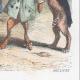 DÉTAILS 06   Vie Privée et Publique des Animaux - Contes Satiriques - Caricature - Duel - Bois de Boulogne - Lapin - Coq - Taureau - Chien