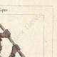 DETAILS 04 | Peoples of the World - Africa - Kaffir - Hottentots - South Africa