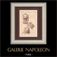 Leones - Gárgola - Ópera de París (Charles Garnier) - Palacio Berley-Bay - Turquía (P. Rouillard)