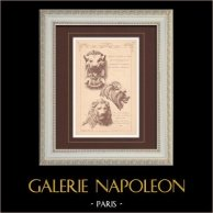 Lions - Gargouille - Opéra de Paris (Charles Garnier) - Palais de Berley-Bay - Turquie (P. Rouillard) | Gravure monochrome. Anonyme. 1876