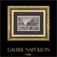 Palace of Versailles - Garden - Tapis vert - Allée Royale - Bassin d'Apollon