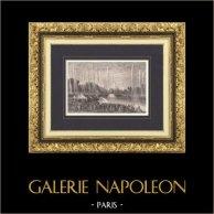 Paleis van Versailles - Kasteel van Versailles - Gardens - Bassin de Neptune