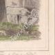 DÉTAILS 08 | Italie Antique - Porte de l'Acropole d'Alatri - Porte à Norba - Latium