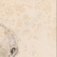 DÉTAILS 04   Portrait de Patrice de Mac Mahon - Maréchal de France - Président République française (1808-1893)