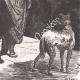DÉTAILS 06 | Don Quichotte par Gustave Doré - Chapitre LVII - Ce qui arriva à Don Quichotte avec l'effrontée et discrète Altisidore