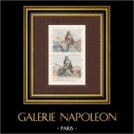 Gaule - Gaulois de la Comata - Gaulois de la Braccata - Gaule Transalpine - 50 ans avant J.C.
