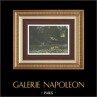 En los alrededores de Paris - Bosque de Boulogne - El Depósito de agua - Isla de Francia (Francia) | Original fotocromo grabado grabado por Gillot. 1890