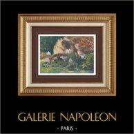 Palace of Versailles - Garden - Les Bains d'Apollon - Grove