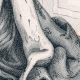 DÉTAILS 06 | Portrait en pied de Blanche de Castille - Reine de France (1188-1252)
