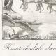 DÉTAILS 01   Kamtschadale dans son Traineau tiré par des Chiens (Itelmènes - Kamtchatka - Russie)