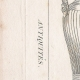 DETAILS 01 | Plate 175 of the Methodical Encyclopedia - Antiquities - Ancient Greece - Ancient Rome - Ancient Egypt - Art - Vases and Ceramics
