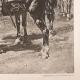 DÉTAILS 03 | Guerres Napoléoniennes - Armée - Cavalerie Legère - Hussards et Dragons (Eugène Meissonier)