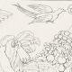 DETAILS 08 | Mythology - Monsters - Angels - Italian Renaissance - Children Playing (Raffaello Sanzio or Raphael)