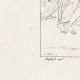 DÉTAILS 02 | Mythologie Romaine - Dieux - Déesses - Renaissance Italienne - Jupiter Accompagné de Junon Va Prendre Possession du Trône Céleste (Raffaello Sanzio dit Raphaël)