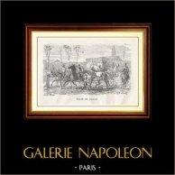 Vista de París - Monumentos Históricos de París - Mercado del Caballo | Original grabado en madera dibujado por R. Bonheur, grabado por H. Boetzel. 1867