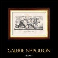 Vue de Paris - Monuments Historiques de Paris - Lion de la Colonne de Juillet (Place de la Bastille) | Gravure sur bois originale gravée par N.E. Sotain. 1867