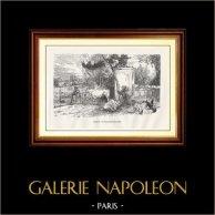 Vista di Parigi - Monumenti Storici di Parigi Francia - Parco - Giardino Zoologico - Menagerie - Jardin d'Acclimatation | Incisione xilografica originale incisa da L. Marais. 1867