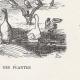 DETAILS 03 | View of Paris - Historical Monuments of Paris - Botanical Garden created by Buffon - Jardin des Plantes