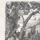 DETAILS 04 | View of Paris - Historical Monuments of Paris - Botanical Garden created by Buffon - Jardin des Plantes