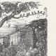 DETAILS 05 | View of Paris - Historical Monuments of Paris - Botanical Garden created by Buffon - Jardin des Plantes