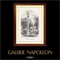 View of Paris - Historical Monuments of Paris - Park - Garden - Jardin du Luxembourg