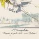 DÉTAILS 01   Gravure de Mode Française - Romantisme - Chapeau de Paille Brodé sans Rubans - L'Escarpolette