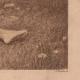 DÉTAILS 03 | Nu Artistique - Nu Féminin - Érotisme - Plaisir d'Été (Henri Guinier)