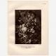 DÉTAILS 03   Fleurs dans un Vase (Jan van Huysum)
