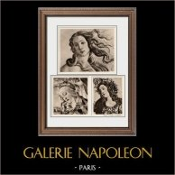 Nascita di Venere - Madonna del Magnificat - Atena - Minerva - Pallade che Doma il Centauro (Sandro Botticelli) | Incisione heliogravure originale su carta velina secondo Sandro Botticelli. Anonima. 1910