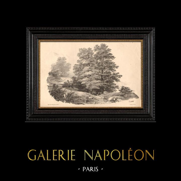 Gravures Anciennes & Dessins | Paysage de Provence (France) | Lithographie | 1833