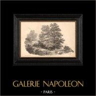 Paysage de Provence (France) | Lithographie originale dessinée par J. Hubert, lithographiée par Gihaut Frères. 1833