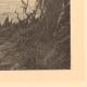 DETTAGLI 02 | Pesca e Caccia - Serpenti in Africa